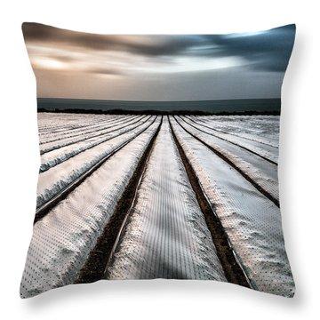 Eternally Everything Throw Pillow by John Farnan