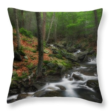 Ethereal Forest Throw Pillow by Bill Wakeley