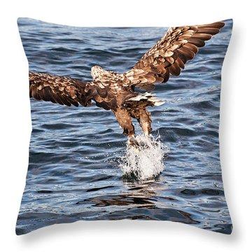 European Fishing Sea Eagle 2 Throw Pillow by Heiko Koehrer-Wagner