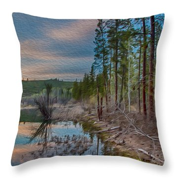 Evening On The Banks Of A Beaver Pond Throw Pillow by Omaste Witkowski