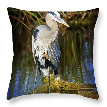 Everglades Blue Throw Pillow by Marty Koch