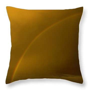 Everyone Needs A Rainbow Throw Pillow by Jeff Swan