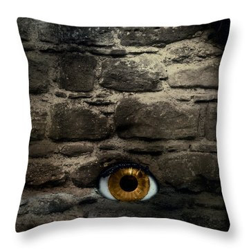 Eye In Brick Wall Throw Pillow by Amanda And Christopher Elwell