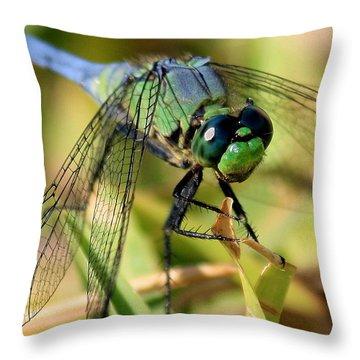 Eye Level Throw Pillow by Carol Groenen