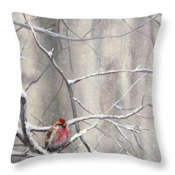 Eyeing The Feeder Alaskan Redpoll In Winter Throw Pillow by Karen Whitworth