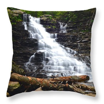 F L Ricketts Throw Pillow by Frozen in Time Fine Art Photography