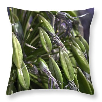 Fading Agapanthus  Throw Pillow by Joy Watson
