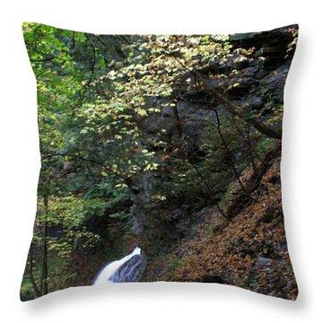 Fairyland Throw Pillow by J Allen