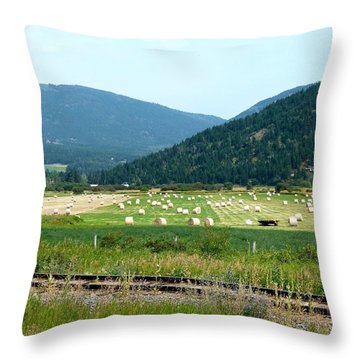 Falkland Hay Bales Throw Pillow by Will Borden