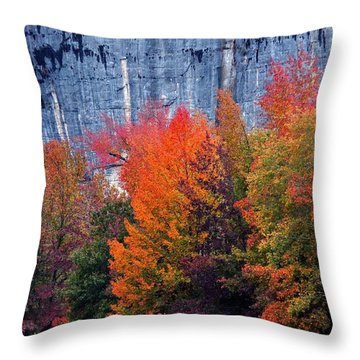 Fall At Steele Creek Throw Pillow by Marty Koch