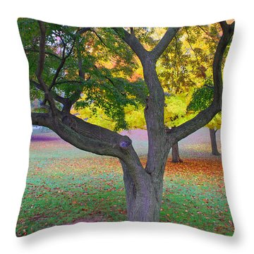 Fall Color Throw Pillow by Lisa Phillips