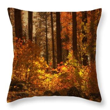 Fall Forest  Throw Pillow by Saija  Lehtonen