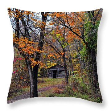 Fall Homestead Throw Pillow by Marty Koch