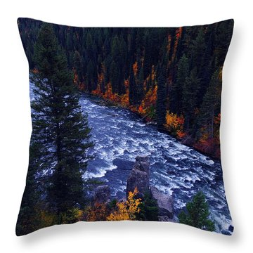 Fall Lined River Throw Pillow by Raymond Salani III