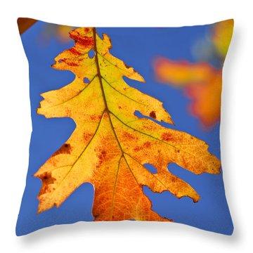 Fall Oak Leaf Throw Pillow by Elena Elisseeva