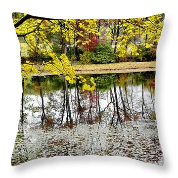 Fall Reflections Throw Pillow by Brian Wallace