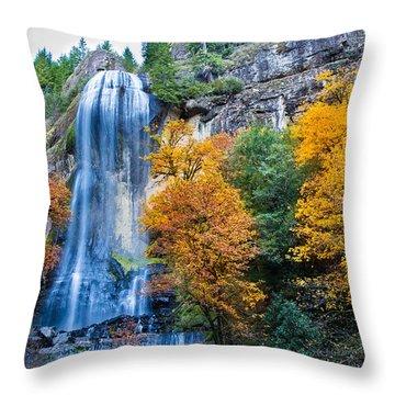 Fall Silver Falls Throw Pillow by Robert Bynum