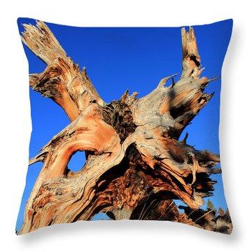 Fallen Throw Pillow by Shane Bechler