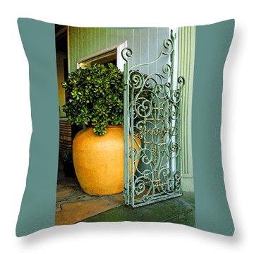 Fancy Gate And Plain Pot Throw Pillow by Ben and Raisa Gertsberg