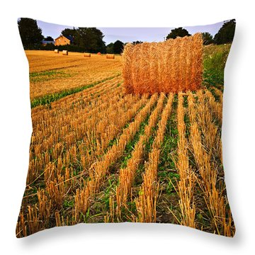 Farm Field With Hay Bales At Sunset In Ontario Throw Pillow by Elena Elisseeva