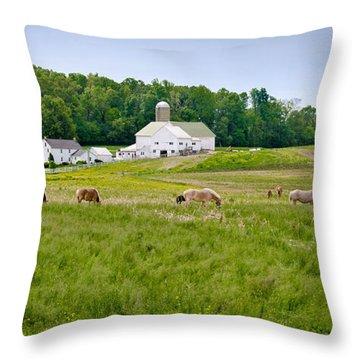 Farm Life Throw Pillow by Guy Whiteley