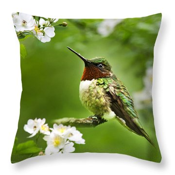 Fauna And Flora - Hummingbird With Flowers Throw Pillow by Christina Rollo