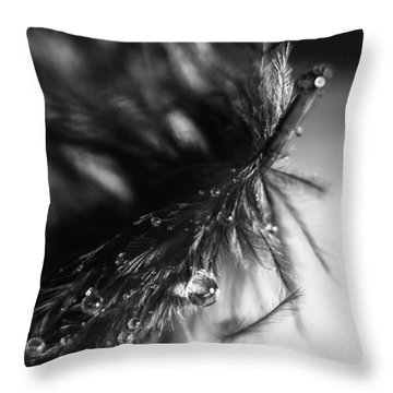 Feathery Drop Throw Pillow by Lauri Novak
