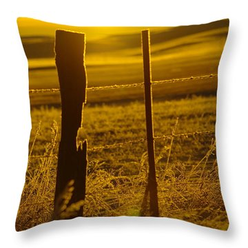 Fence Post In The Morning Light Throw Pillow by Jeff Swan
