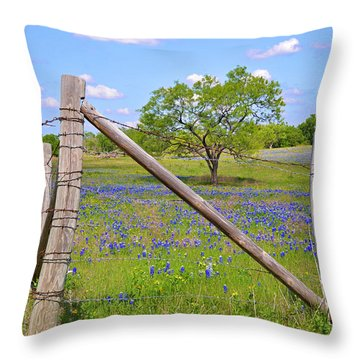 Fenced-in Beauty Throw Pillow by Lynn Bauer