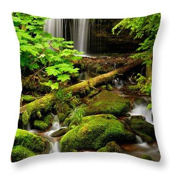 Fern Falls Panoramic Throw Pillow by Leland D Howard