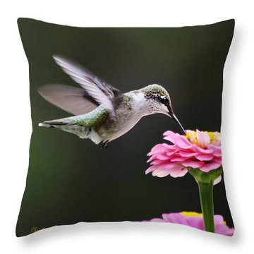 Few And Far Between Throw Pillow by Christina Rollo