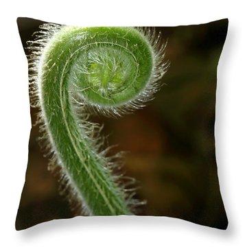 Fiddlehead Fern Curl Throw Pillow by Sabrina L Ryan