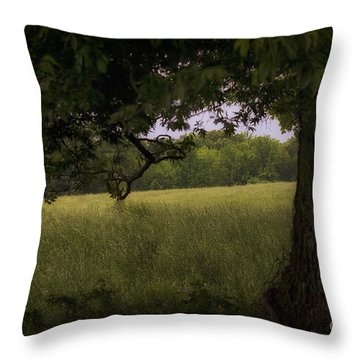 Field Of Dreams II Throw Pillow by Cris Hayes