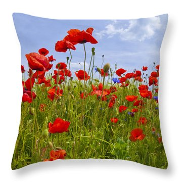 Field Of Red Poppies Throw Pillow by Melanie Viola