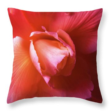 Fire And Ice Floral Begonia Throw Pillow by Jennie Marie Schell