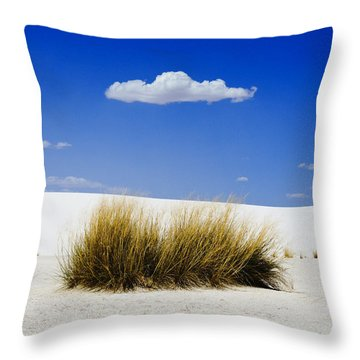 First Contact Throw Pillow by Skip Hunt