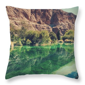Fish Gotta Swim Throw Pillow by Laurie Search