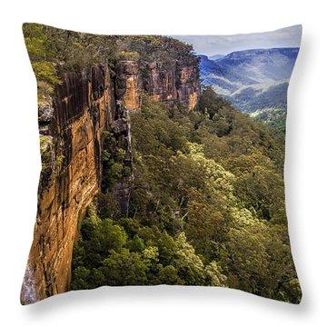 Fitzroy Falls In Kangaroo Valley Australia Throw Pillow by David Smith