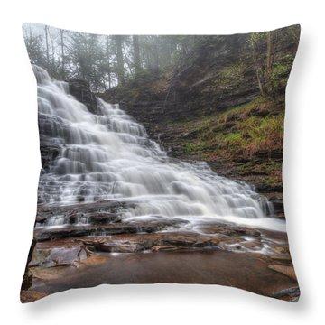 Fl Ricketts Waterfall Throw Pillow by Lori Deiter