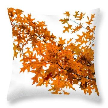 Flames Of The Season - Featured 3 Throw Pillow by Alexander Senin