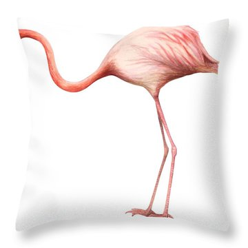 Flamingo Throw Pillow by Anonymous