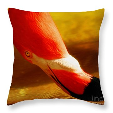 Flamingo Beauty Throw Pillow by Cheryl Young