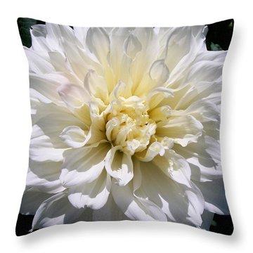 Fleurel Dahlia Throw Pillow by Sharon Duguay