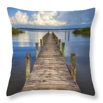 Floating Throw Pillow by Debra and Dave Vanderlaan