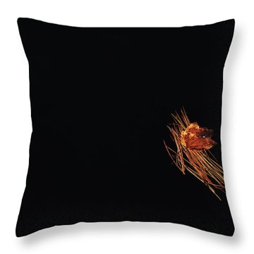 Floating Throw Pillow by Karol Livote