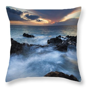 Flooded Throw Pillow by Mike  Dawson