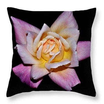 Floribunda Rose In Full Bloom Throw Pillow by Susan Wiedmann