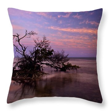Florida Mangrove Sunset Throw Pillow by Mike  Dawson