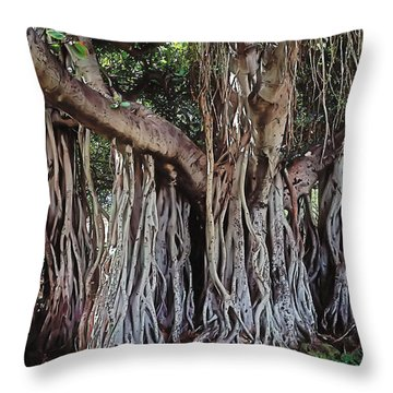 Flow Throw Pillow by Terry Reynoldson