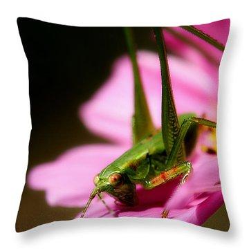 Flower Hopper Throw Pillow by Michael Eingle